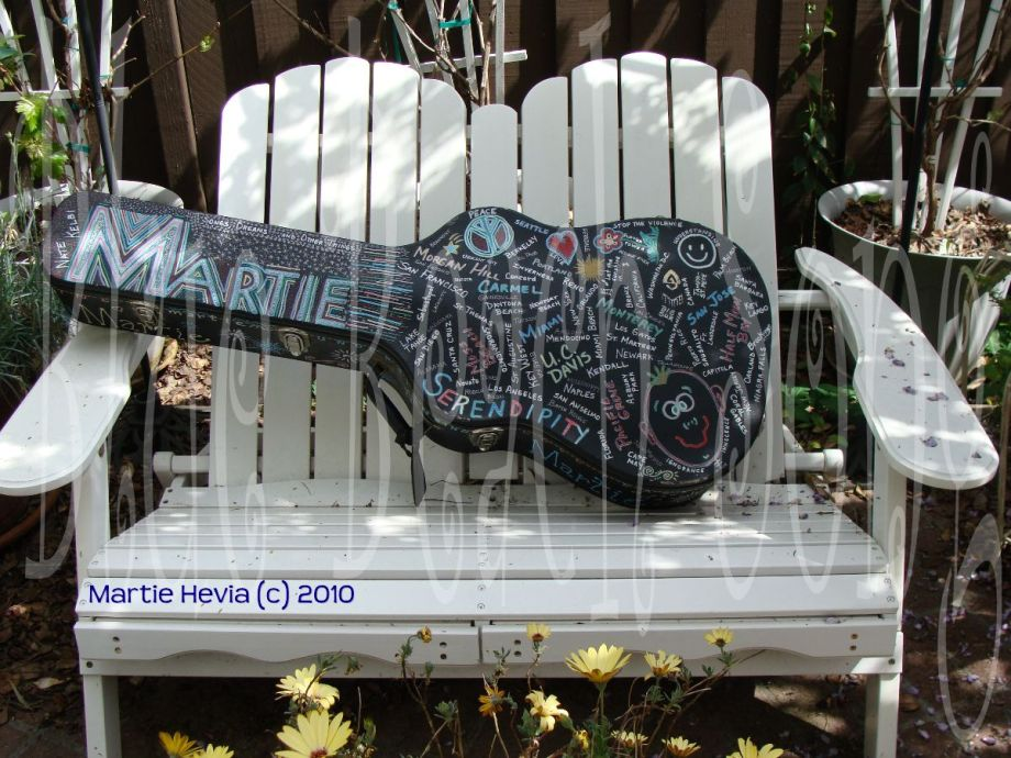 Martie's Guitar Case