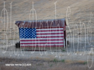 American Flag Barn by Martie Hevia (c) All Rights Reserved